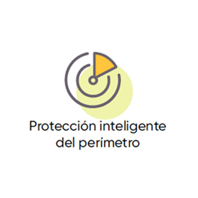 Protección de Perímetro